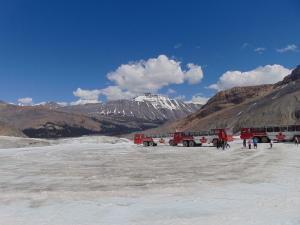 Ônibus especiais para a geleira